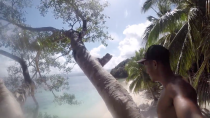 Tree climbing on an inhabited Island in the Philippines